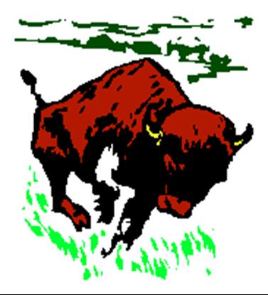 Picture of Buffalo Breath 4lb.