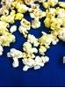White Popcorn Kernels
