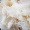 Dutch Hill Maple Cotton Candy.jpg